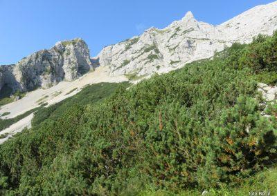 102 vzpon z Vršična na Malo Mojstrovko - pot je speljana skozi škrbino Vtarca, 8.45