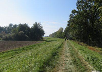 27 na poti od Dolge vasi do Velike Polane, 11.58