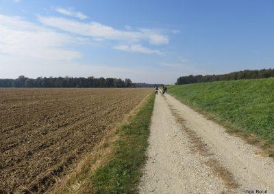 33 na poti od Dolge vasi do Velike Polane, pri zapornici na Ledavi, 12.24