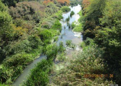 46 na poti od Dolge vasi do Velike Polane, Kobiljski potok-kanal, 11.36