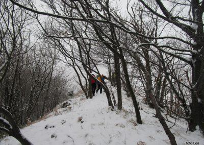 20 vzpon na Ivanščico, 1060m, 12.06