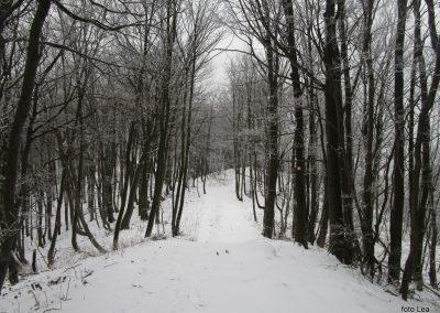 31 vzpon na Ivanščico, 1060m, 12.26