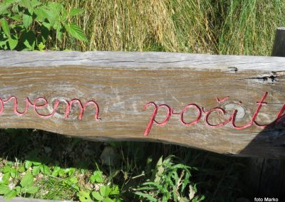26 VZPON NA STOL, z Zabreške planine na Stol - počivališče pri klopci, 10.55