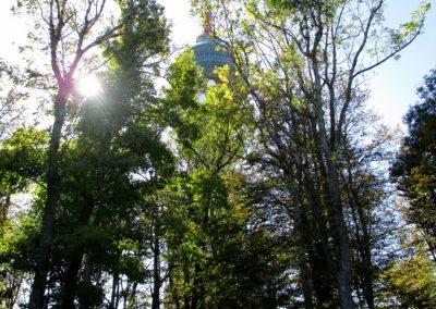 23 SLJEME, vzpon z naselja Pila na Sljeme - na vrhu, 12.39