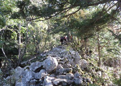 28 SLJEME, vzpon proti planinskemu domu na Hunjki - 'Horvatove stube', 10.40
